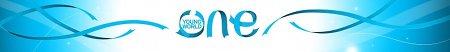 oneyoungworld, oyw, конференция, младежка, цюрих, давос, постижения, делегат, регистрация, 2011