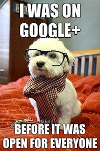 doggoogle