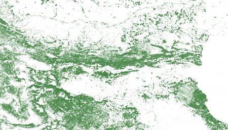 Данните за горите по сателитна снимка на NASA