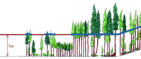 Илюстрация какво се засича като гора от сателитите